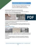 Patologias Del Concreto (Exp)