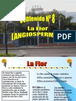 Clase Flor