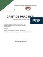 Caiet Practica Ansamblul Firmei