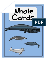 Whale Cards new