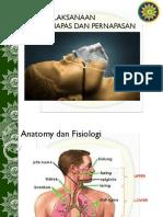 Airway Breathing Copy 2