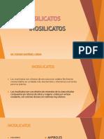 16 Inosilicatos.pdf