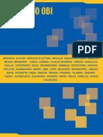 Catalogo Obi 2017