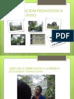 JESSICA GUALLICHICO  8VO A.pptx