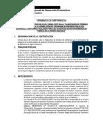TDR CONSULTOR PROGRAMA.docx