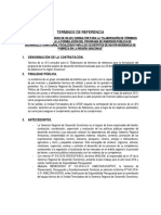 Tdr Consultor Programa