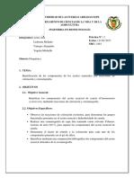 Informe 2 Cromatografía Canela 2461