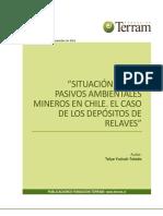 APP N61 Situación de Los Pasivos Ambientales Mineros en Chile. El Caso de Los Depósitos de Relaves