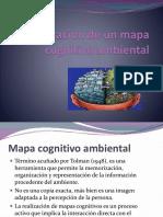 Elaboracion de Un Mapa Cognitivo