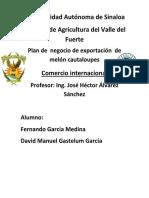 Plan de Negocios en Exportacion de Melon Cantaloupes