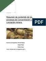 Resumen de Contenido de Los Procesos de Concentración y Lixiviación Minera