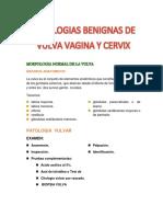 Patologias Benignas de Vulva Vagina y Cervix