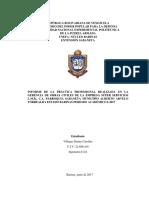 Informe de Villegas Diannys
