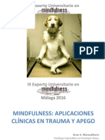 Mindfulness y Psicoterapia Malaga 2016
