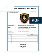 Proyecto Investigacion Pnp