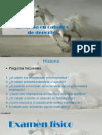 expo. equinos 1 (1)