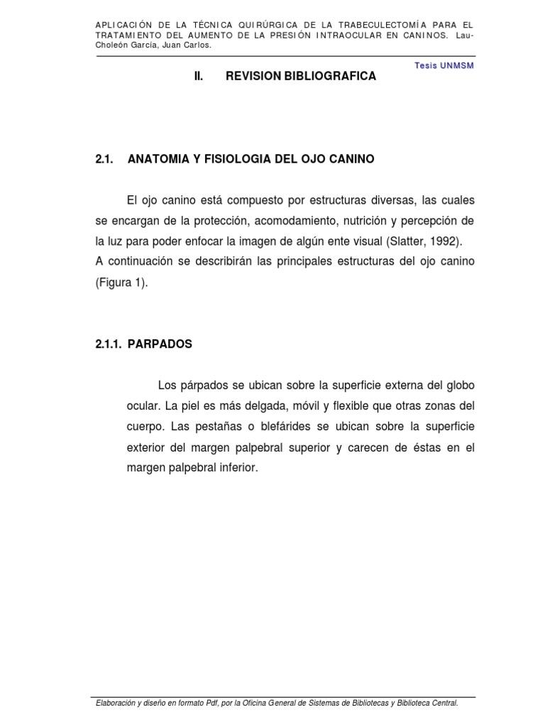Ojo Canino (1)_unlocked