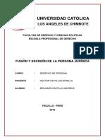 FUSIÓN Y ESCISIÓN DE LA PERSONA JURÍDICA-MONOGRAFIA.pdf