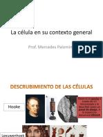Clase Teórica 10_célula Procariota_versión 3