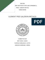 Element Free Galerkin Method