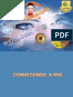 1º MÊS. AULA 4. IRIDOLOGIA INTRODUÇÃO(1).pdf