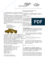 practica de RV - 4TO.docx