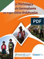 282649628-Descripcion-Morfologica-del-Tuberculo-Germoplasma-de-Papa-Nativa-Andahuayla.pdf