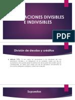 Obligaciones Divisibles e Indivisibles