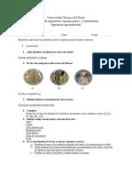 Cuestionario Bio Raiz