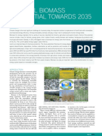 Factsheet Biomass Potential