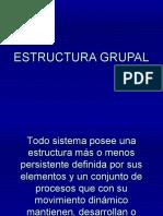 Ecstructura grupal