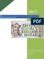 Curso Cambio de Divisas en El Mercado Internacional Implicaciones Alternativas, Riesgos