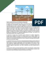 Impacto ambiental fertilizantes