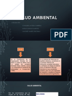 Salud Ambiental.pptx