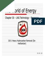 30I - Heavy Hydrocarbon Removal (de-methanizer)