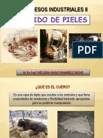 CLASE 1 CUERO.pdf