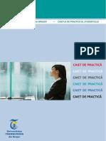 caiet de practica_complet.docx