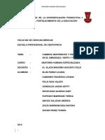 ANATOMIA-ESPECIALIZADA-PDF.pptx