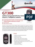 GT300 ES 20140410