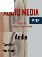 audio ( types of audio media).pptx