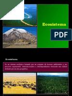 2.0. Ecosistema