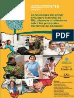 Conclusiones Microcredito en España