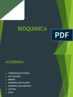 Bio Quim CA 2013