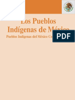 Pueblos Oindigenas de Mexico