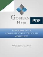 Panorama de La Administración Pública en México 2017.