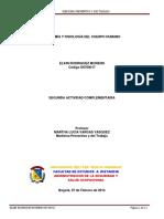 Anatomía y Fisiología Del Cuerpo Humano
