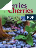 Berries and Cherries Nro 18