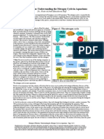 biological_filtration__understanding_the_nitrogen_cycle_in_aquariums