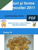 Culturanucului Soiurisiformealerecoltei2011 130108040252 Phpapp02