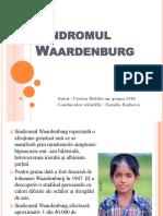 Sindromul Waardenburg